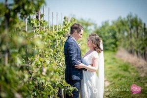 Orchard wedding photo